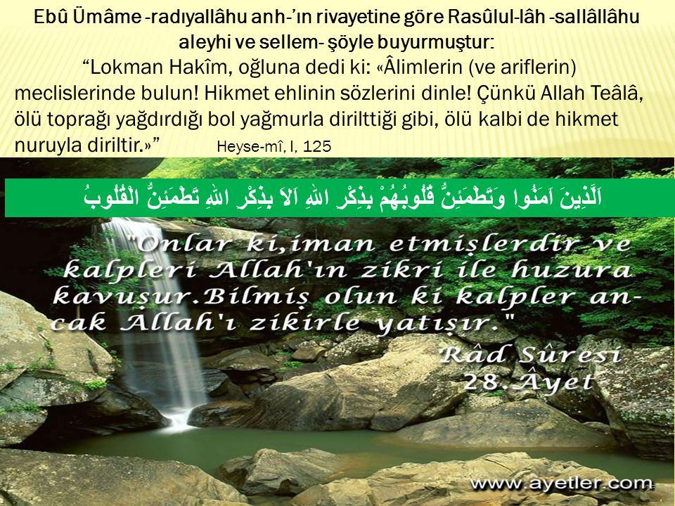 Ebû Ümâme -radıyallâhu anh-'ın rivayetine göre Rasûlul-lâh -sallâllâhu aleyhi ve sellem- şöyle buyurmuştur:
