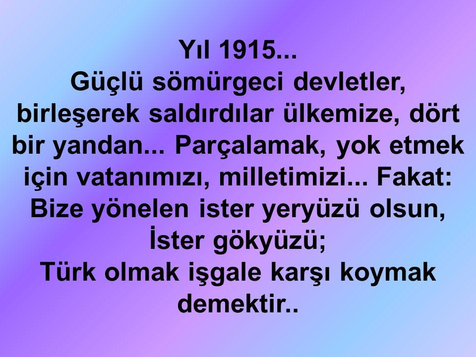 Türk olmak işgale karşı koymak demektir..