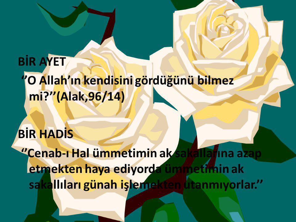 BİR AYET ''O Allah'ın kendisini gördüğünü bilmez mi