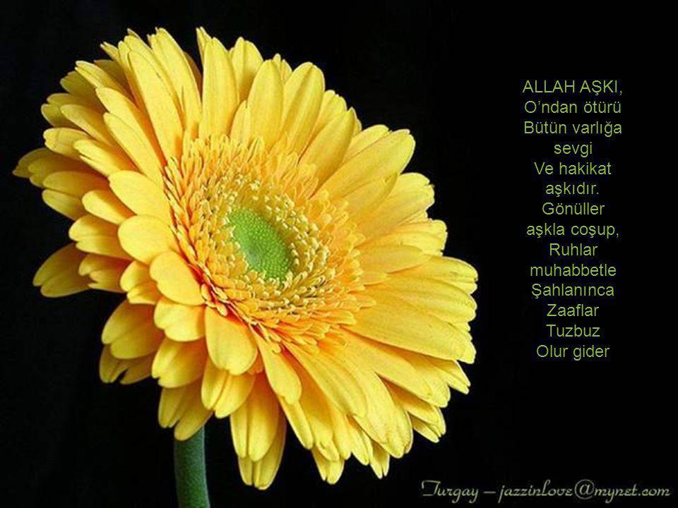 ALLAH AŞKI, O'ndan ötürü. Bütün varlığa sevgi. Ve hakikat aşkıdır. Gönüller aşkla coşup, Ruhlar muhabbetle.