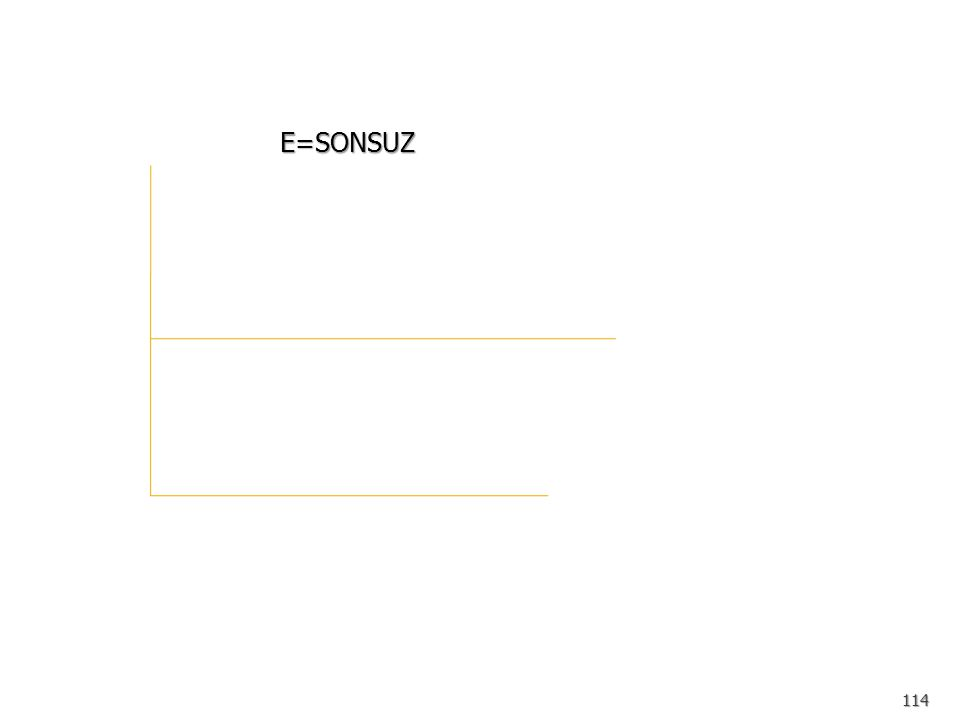 E=SONSUZ