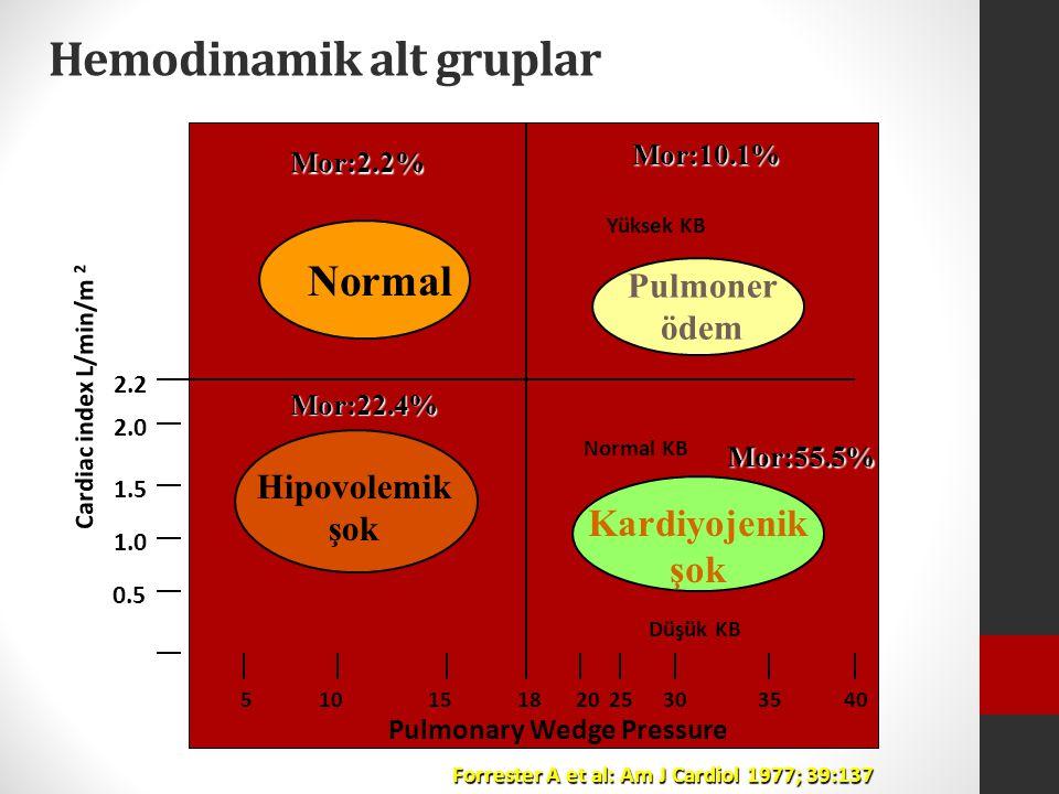 Hemodinamik alt gruplar