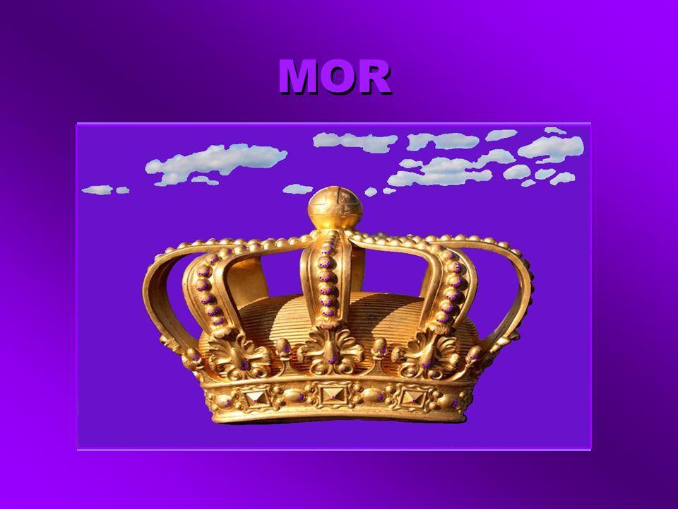 MOR KING Hepinizden üstün benim. Otorite, bilgelik, asalet