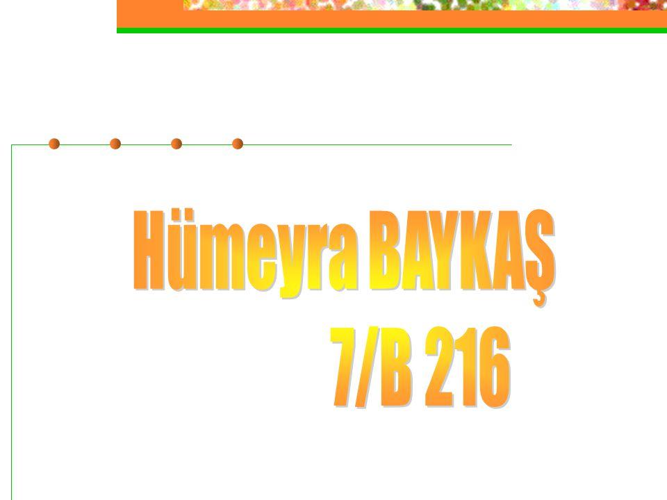 Hümeyra BAYKAŞ 7/B 216