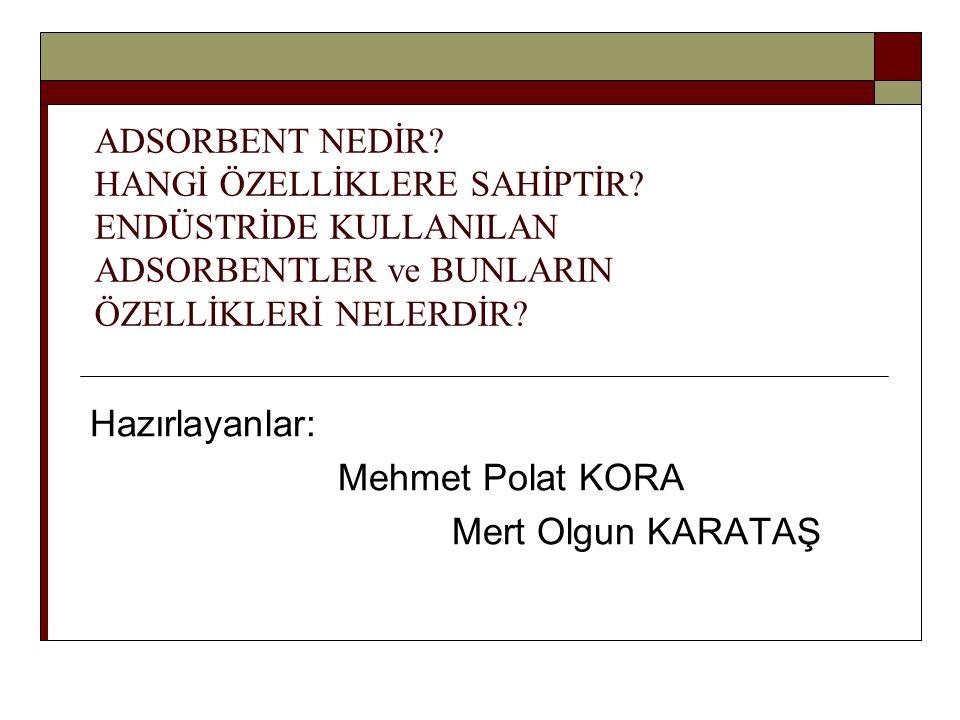 Hazırlayanlar: Mehmet Polat KORA Mert Olgun KARATAŞ