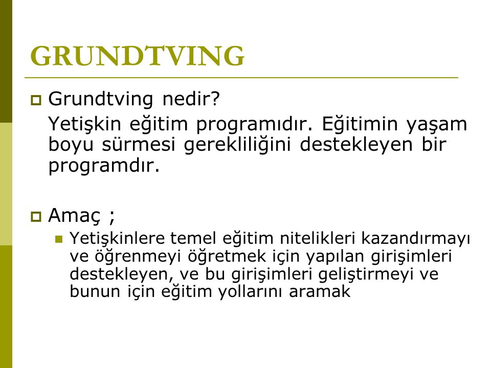 GRUNDTVING Grundtving nedir