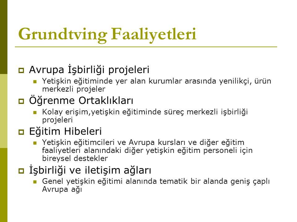 Grundtving Faaliyetleri