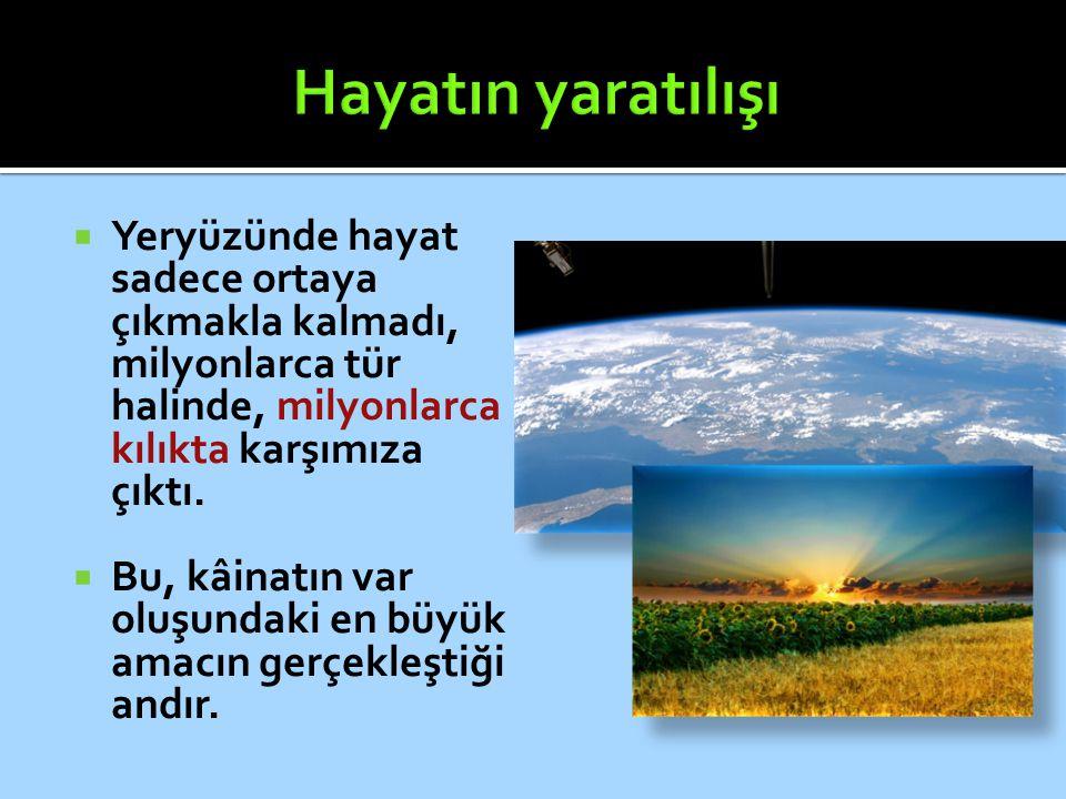 Hayatın yaratılışı Yeryüzünde hayat sadece ortaya çıkmakla kalmadı, milyonlarca tür halinde, milyonlarca kılıkta karşımıza çıktı.