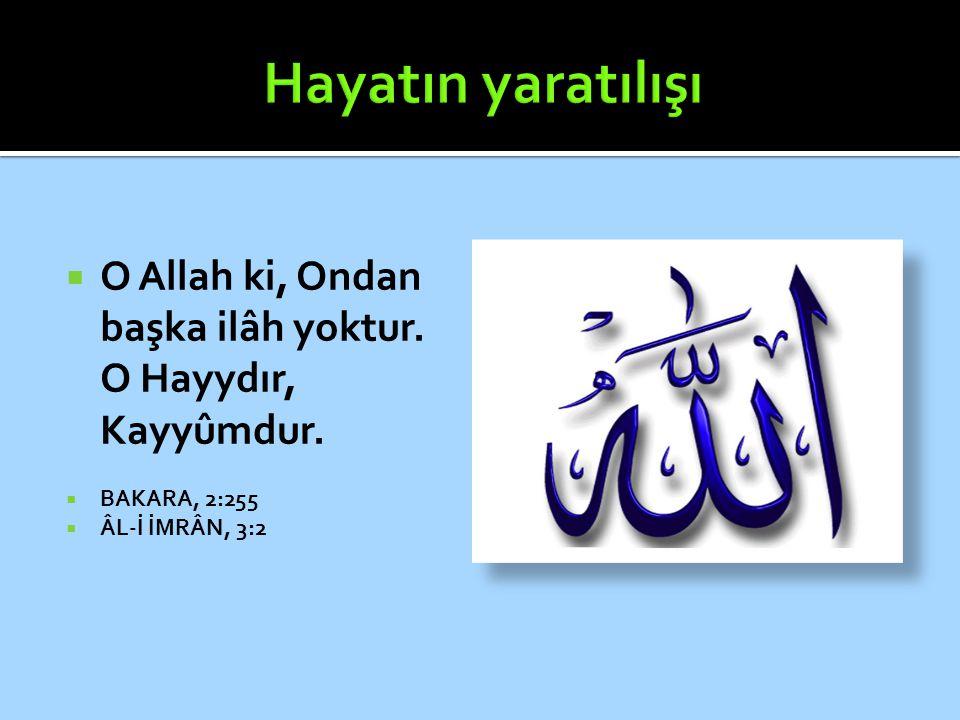Hayatın yaratılışı O Allah ki, Ondan başka ilâh yoktur.