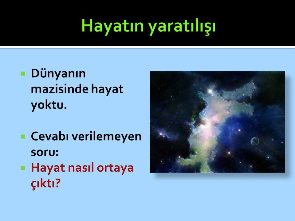 Hayatın yaratılışı Dünyanın mazisinde hayat yoktu.