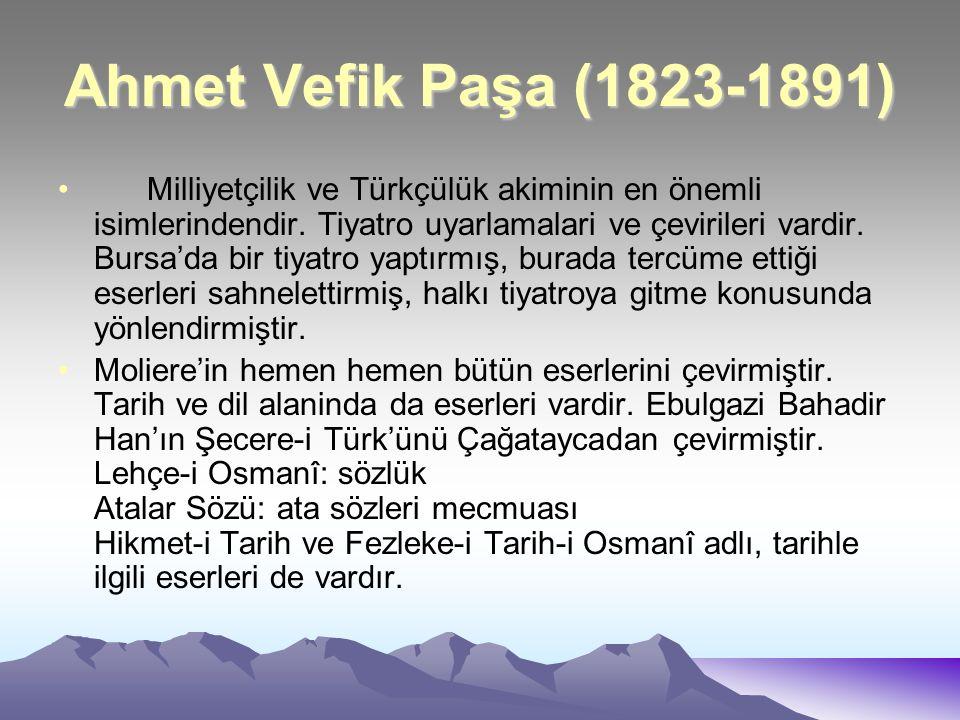 Ahmet Vefik Paşa (1823-1891)