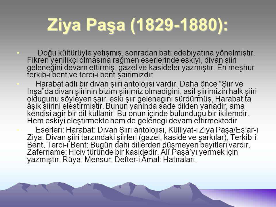 Ziya Paşa (1829-1880):