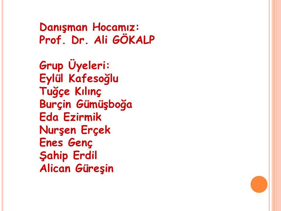 Danışman Hocamız: Prof. Dr
