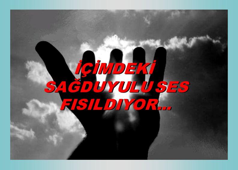 İÇİMDEKİ SAĞDUYULU SES FISILDIYOR...