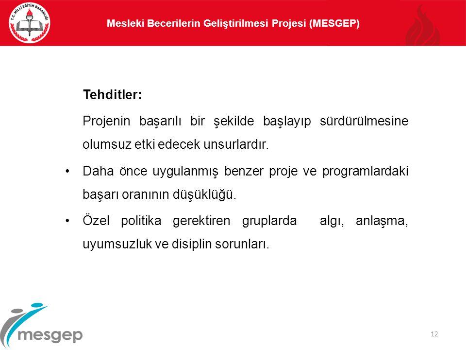 Mesleki Becerilerin Geliştirilmesi Projesi (MESGEP)