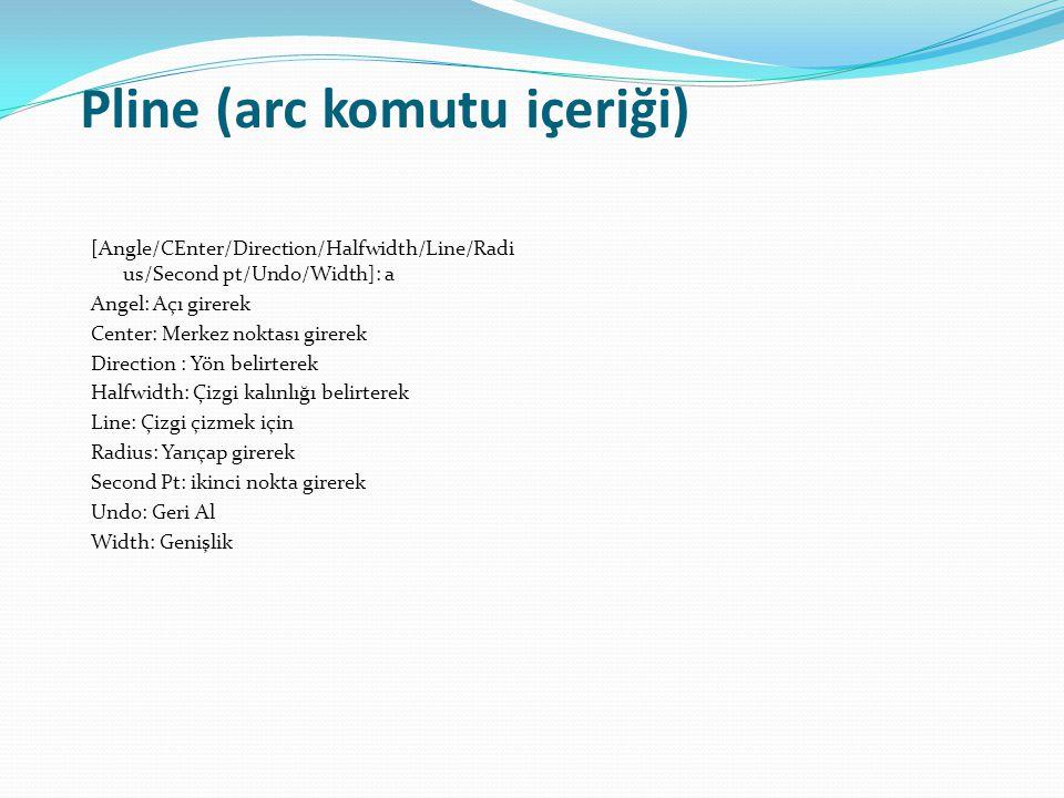 Pline (arc komutu içeriği)