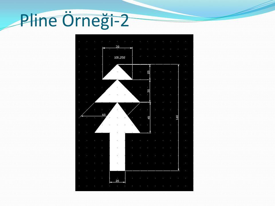 Pline Örneği-2