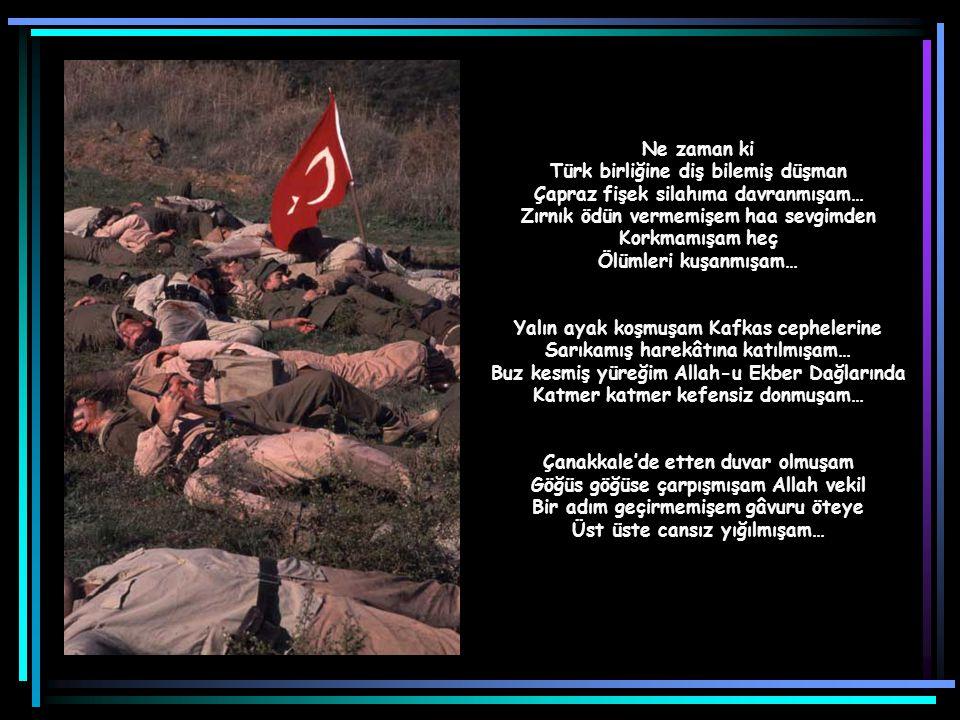 Türk birliğine diş bilemiş düşman Çapraz fişek silahıma davranmışam…