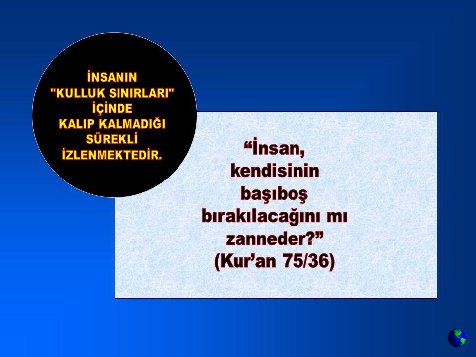 İnsan, kendisinin başıboş bırakılacağını mı zanneder (Kur'an 75/36)