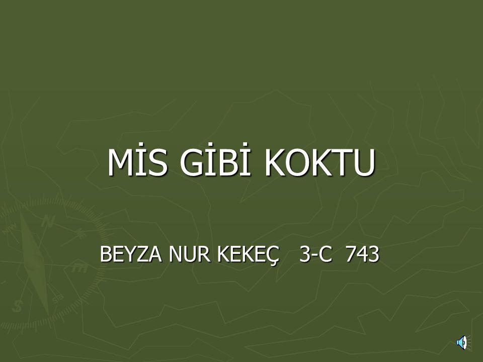 MİS GİBİ KOKTU BEYZA NUR KEKEÇ 3-C 743
