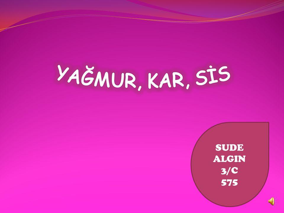 YAĞMUR, KAR, SİS SUDE ALGIN 3/C 575