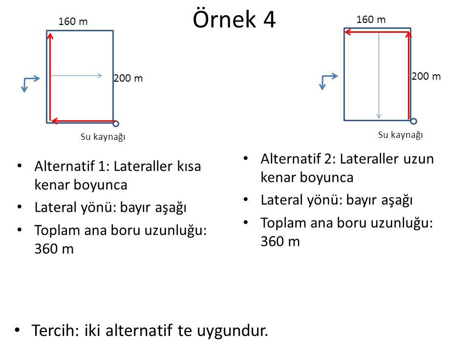 Örnek 4 Tercih: iki alternatif te uygundur.