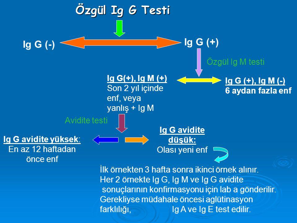 Özgül Ig G Testi Ig G (+) Ig G (-) Özgül Ig M testi Ig G(+), Ig M (+)