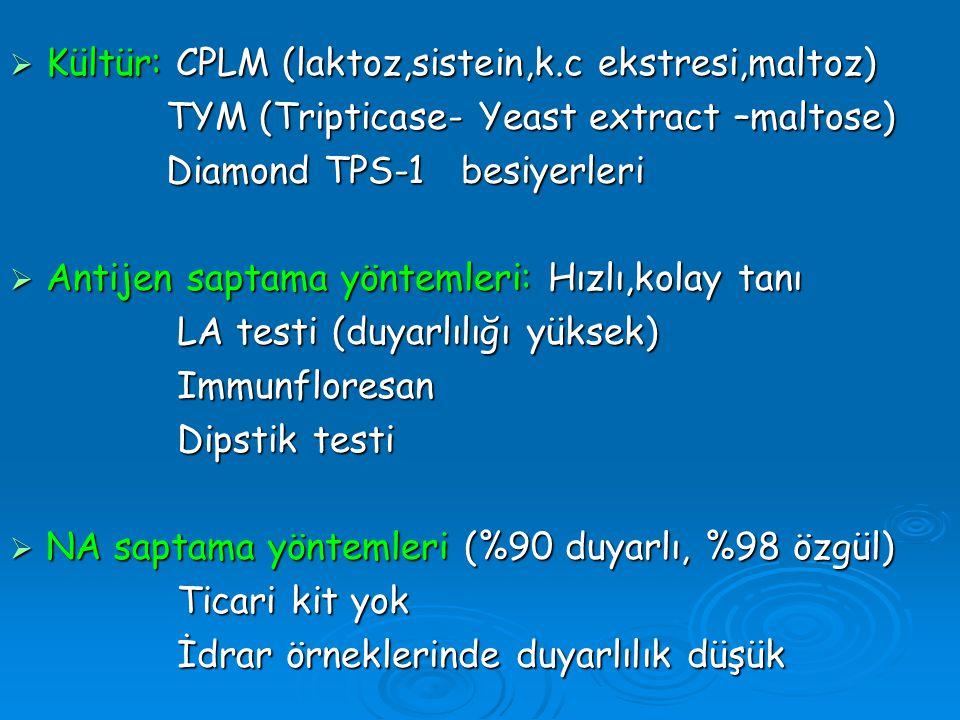 Kültür: CPLM (laktoz,sistein,k.c ekstresi,maltoz)