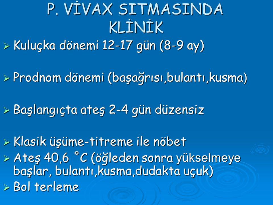 P. VİVAX SITMASINDA KLİNİK