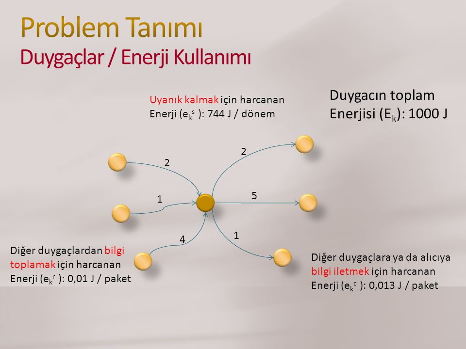 Problem Tanımı Duygaçlar / Enerji Kullanımı
