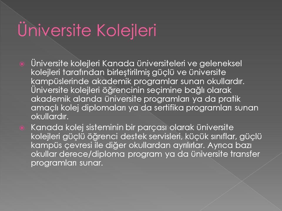 Üniversite Kolejleri