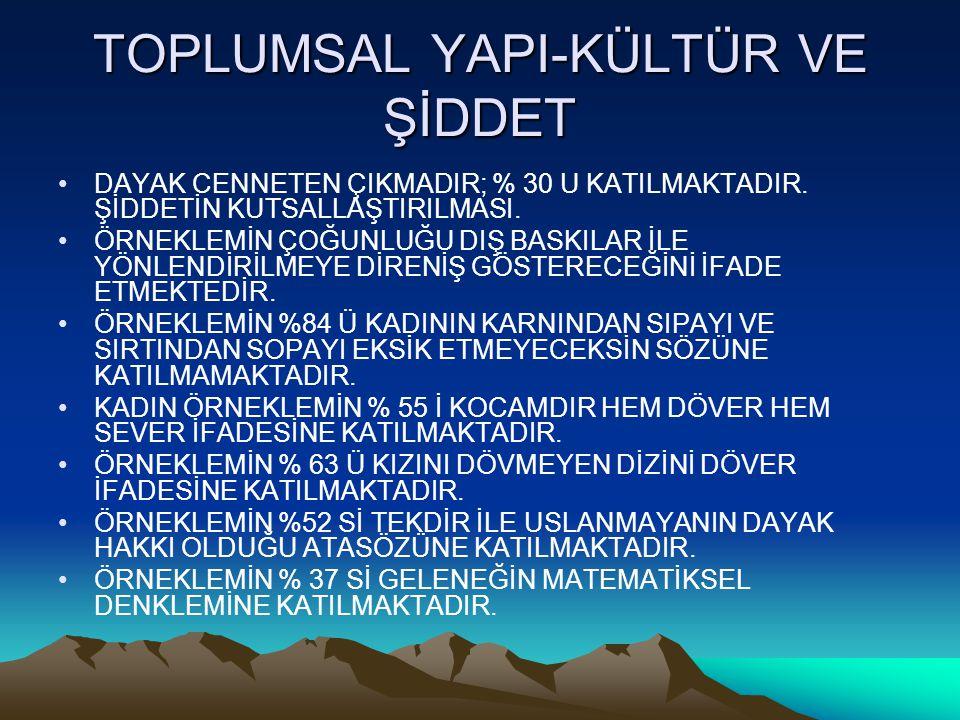 TOPLUMSAL YAPI-KÜLTÜR VE ŞİDDET