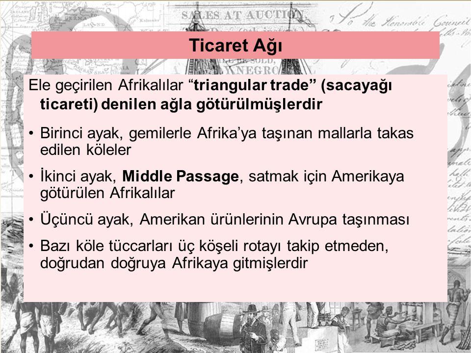 Ticaret Ağı Ele geçirilen Afrikalılar triangular trade (sacayağı ticareti) denilen ağla götürülmüşlerdir.