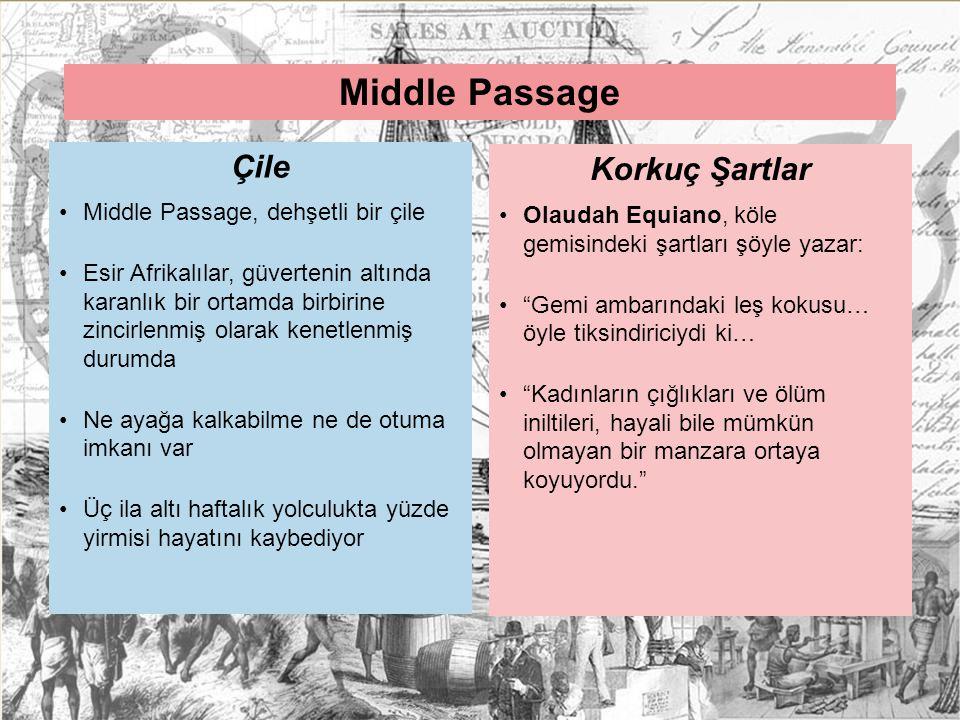 Middle Passage Çile Korkuç Şartlar Middle Passage, dehşetli bir çile