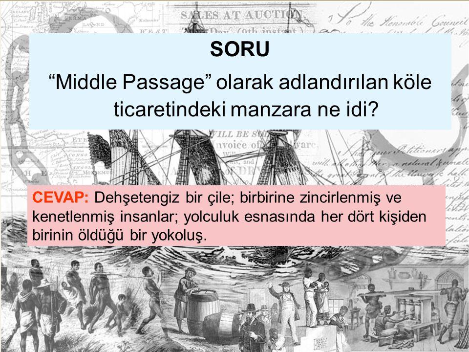 SORU Middle Passage olarak adlandırılan köle ticaretindeki manzara ne idi