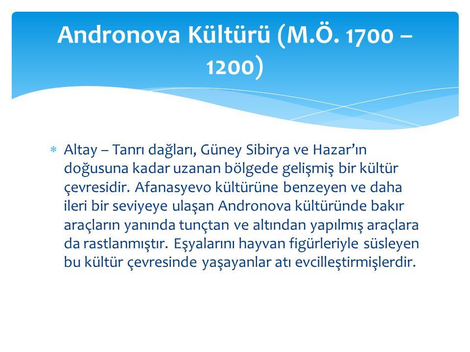 Andronova Kültürü (M.Ö. 1700 – 1200)