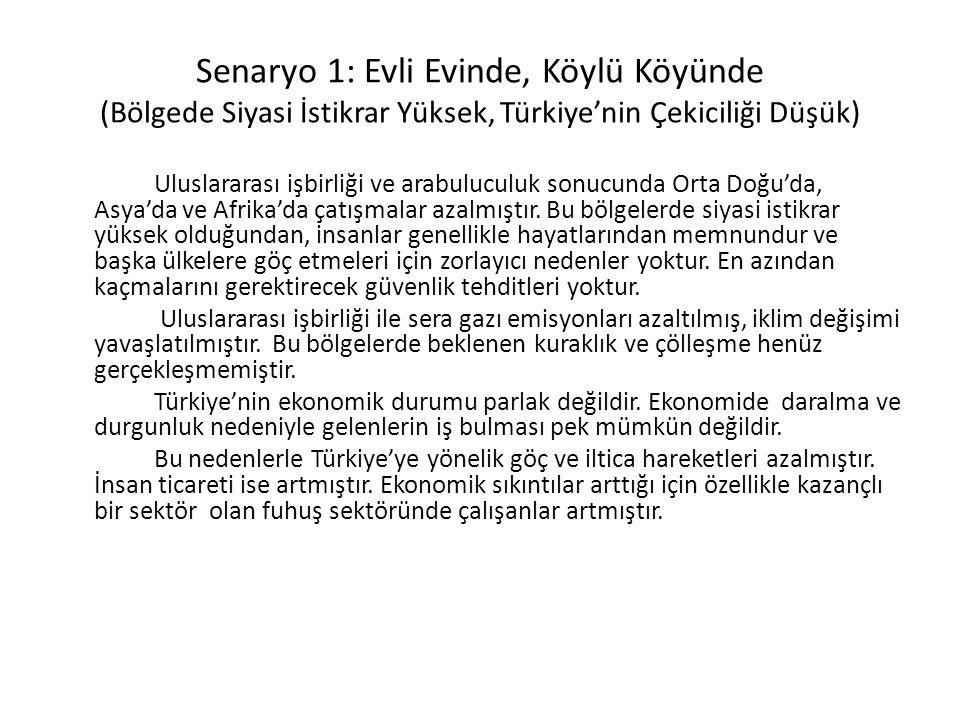 Senaryo 1: Evli Evinde, Köylü Köyünde (Bölgede Siyasi İstikrar Yüksek, Türkiye'nin Çekiciliği Düşük)