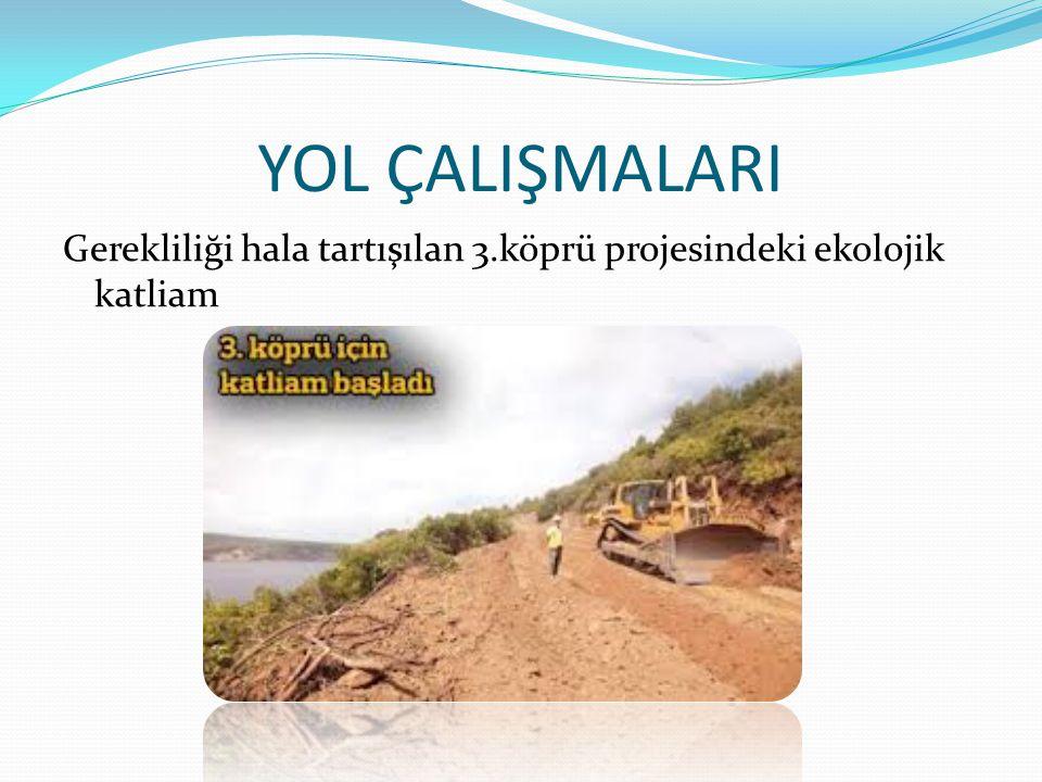 YOL ÇALIŞMALARI Gerekliliği hala tartışılan 3.köprü projesindeki ekolojik katliam