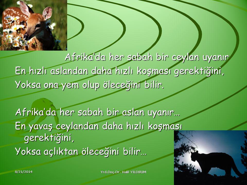 Yrd.Doç.Dr. Halil YILDIRIM
