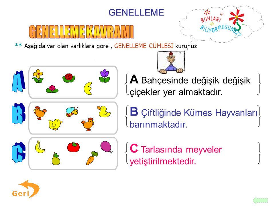 GENELLEME KAVRAMI A B C A Bahçesinde değişik değişik
