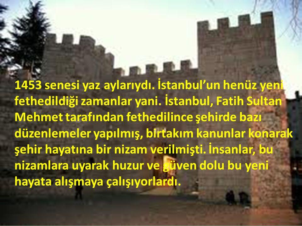 1453 senesi yaz aylarıydı. İstanbul'un henüz yeni fethedildiği zamanlar yani.