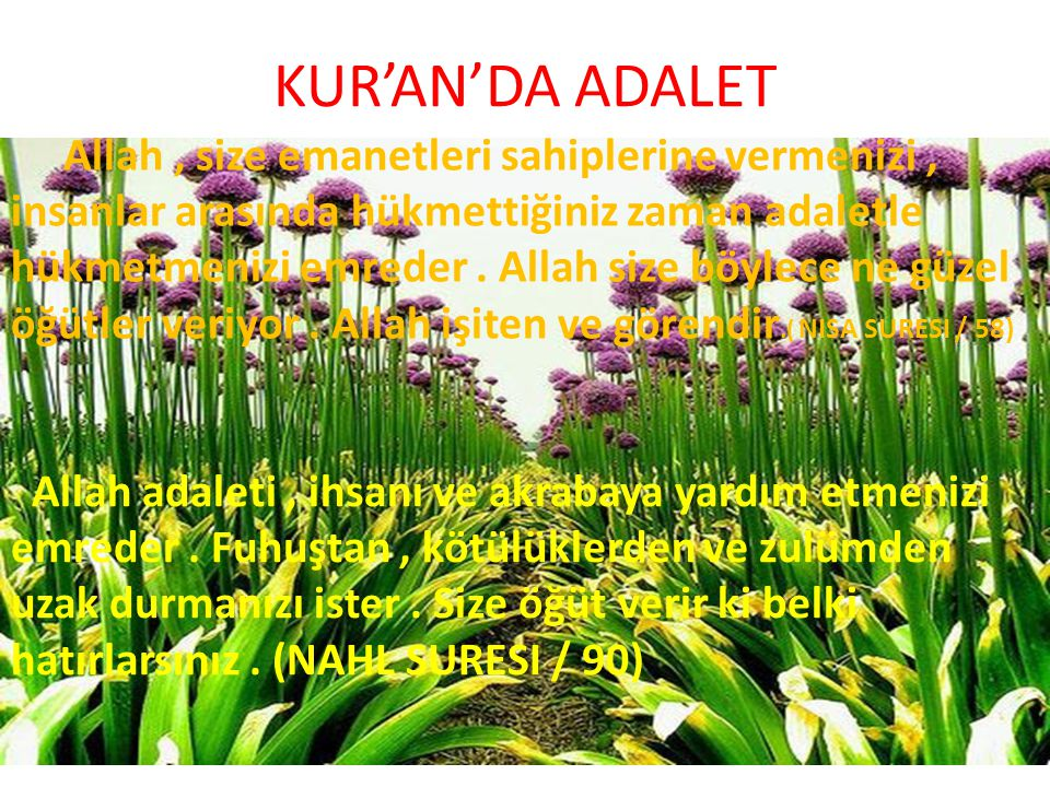 KUR'AN'DA ADALET