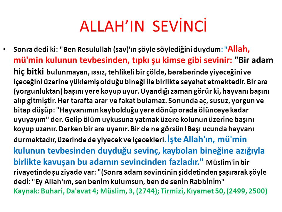 ALLAH'IN SEVİNCİ
