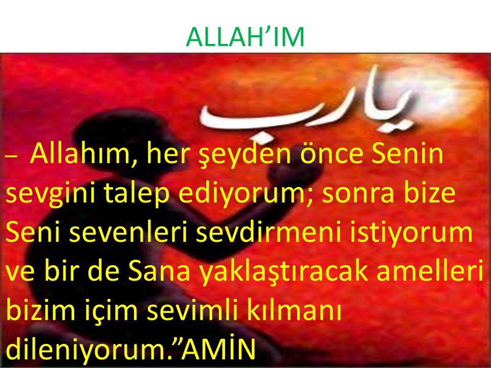 ALLAH'IM