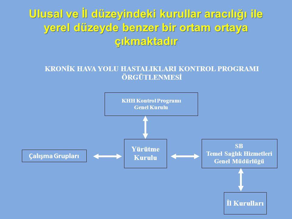 Ulusal ve İl düzeyindeki kurullar aracılığı ile yerel düzeyde benzer bir ortam ortaya çıkmaktadır