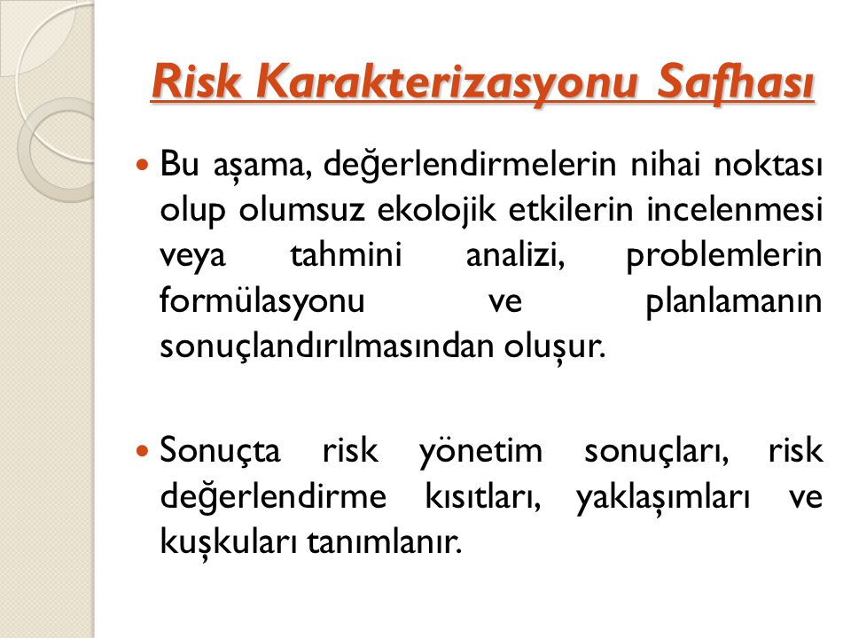 Risk Karakterizasyonu Safhası