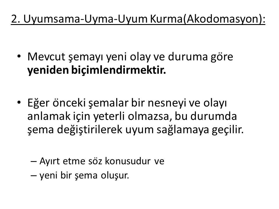 2. Uyumsama-Uyma-Uyum Kurma(Akodomasyon):