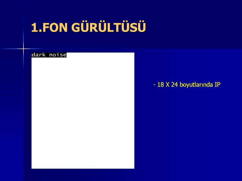 1.FON GÜRÜLTÜSÜ - 18 X 24 boyutlarında IP