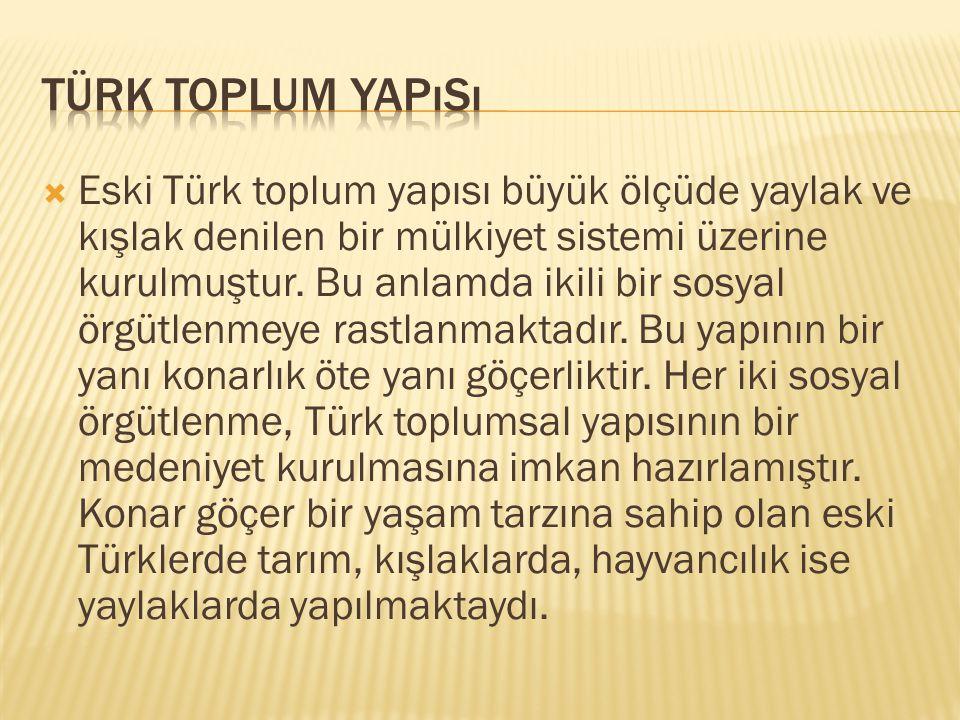 Türk Toplum Yapısı