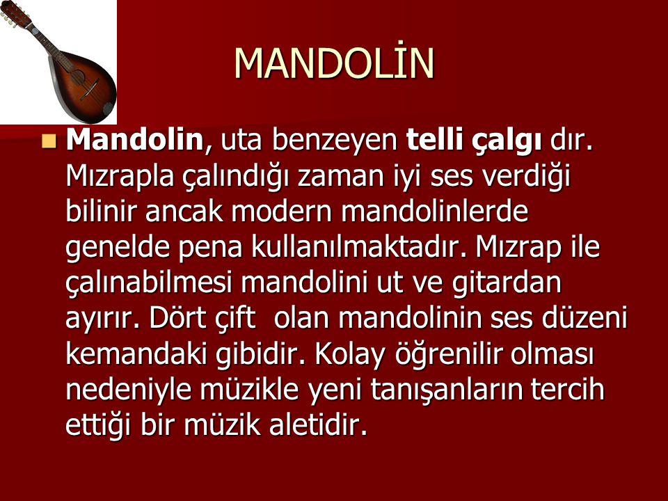 MANDOLİN